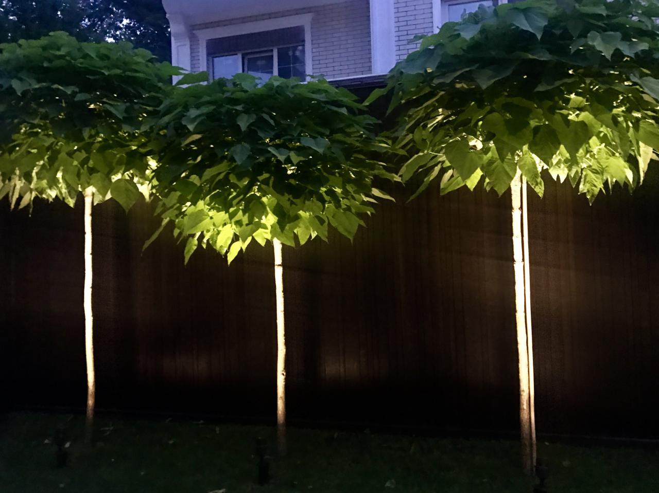 Освещение в саду - Art Flora